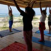 ingrid bott vinyasa yoga teacher